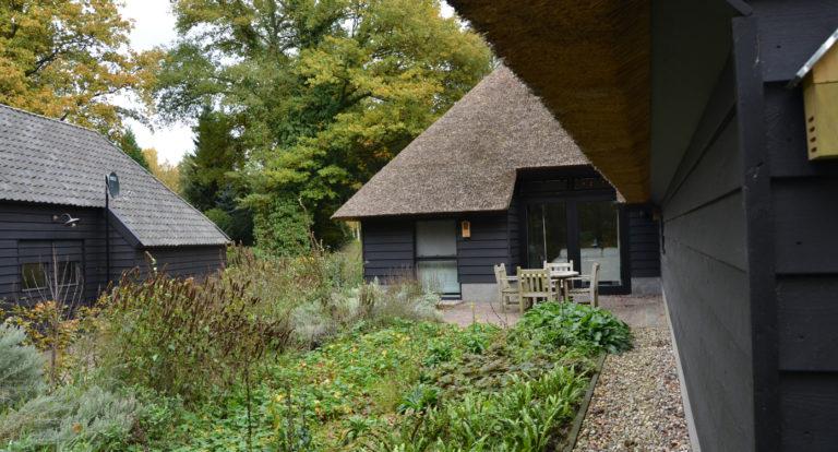 drijvers-oisterwijk-bosvilla-riet-hout-bungalow (16)