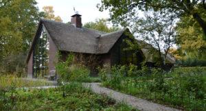 drijvers-oisterwijk-bosvilla-riet-hout-bungalow (4)