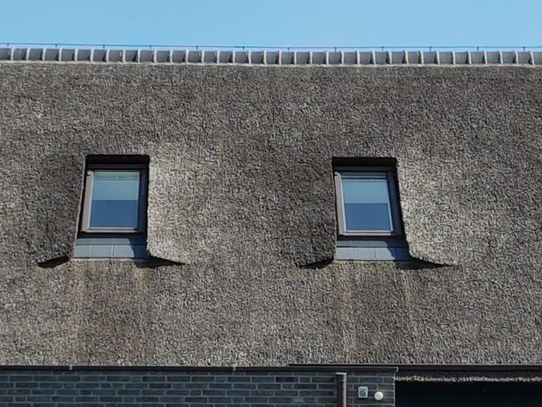 drijvers-oisterwijk-schuurwoning-riet