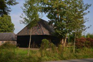 drijvers-oisterwijk-restauratie-exterieur-boerderij-pannendak-houten-gevel-ramen-deuren-spanten-bakstenen-landelijk (17)