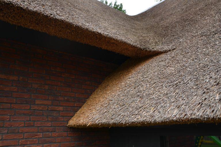 drijvers-oisterwijk-villa-Giersbergen-riet-modern-landelijk (13)