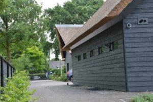 drijvers-oisterwijk-villa-Giersbergen-riet-modern-landelijk (8)