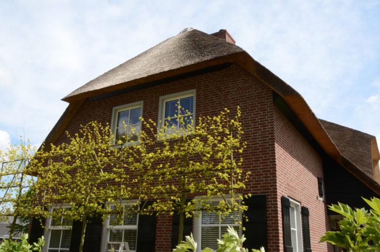 drijvers-oisterwijk-riet-baksteen-houten-gevel-wolfseind-ramen-2