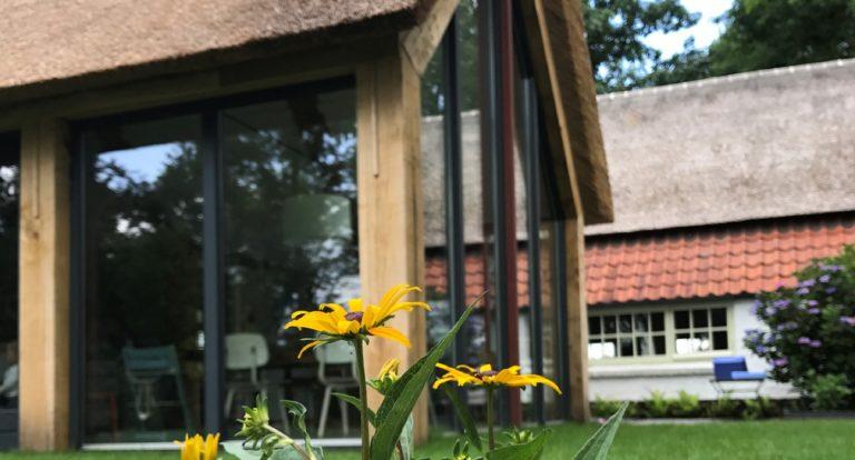 drijvers-oisterwijk-uitbreiding-boerderij-riet-spant (4)-min