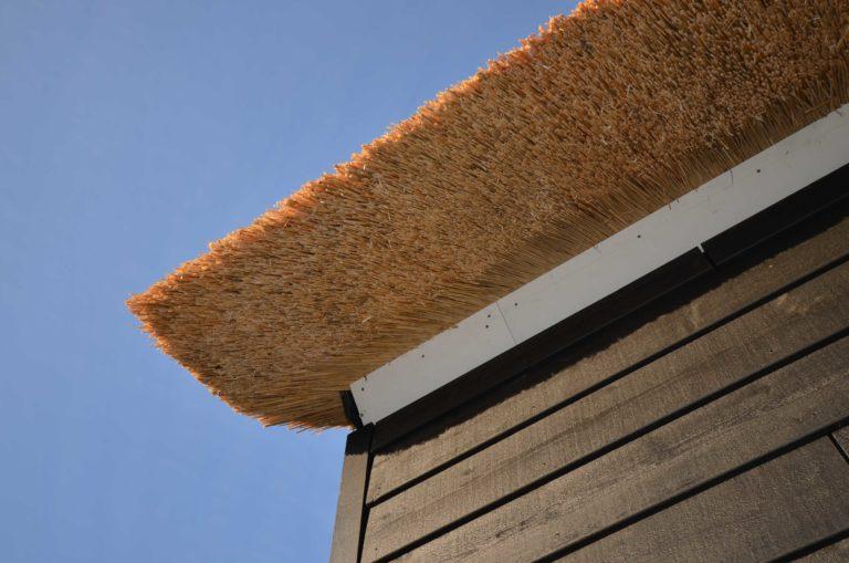 drijvers-oisterwijk-nieuwbouw-exterieur-riet-hout-bakstenen-gevel-grote-pui-ramen-dakkapel-hout-kozijn (1)