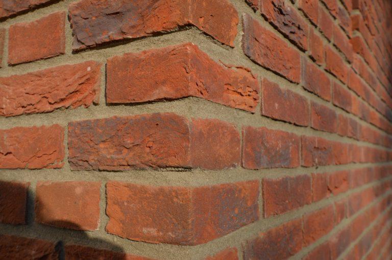 drijvers-oisterwijk-nieuwbouw-exterieur-riet-hout-bakstenen-gevel-grote-pui-ramen-dakkapel-hout-kozijn (5)