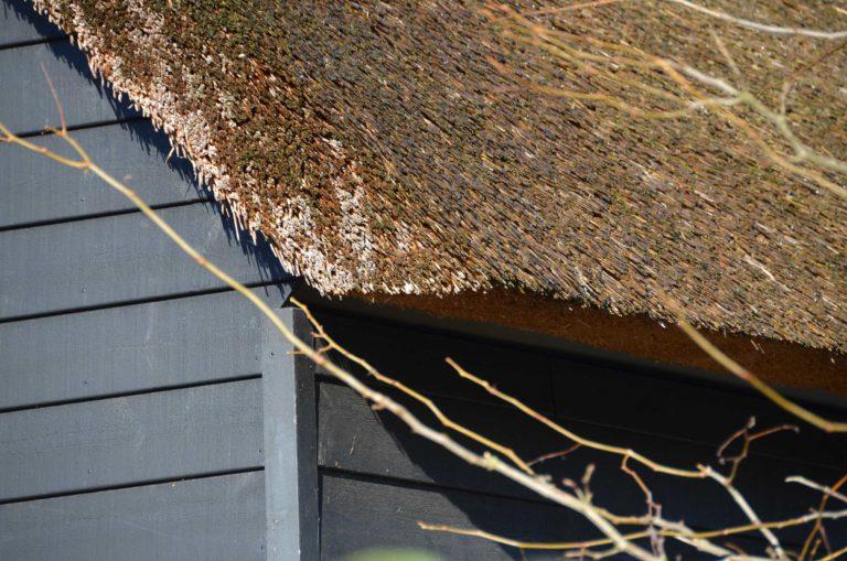 drijvers-oisterwijk-nieuwbouw-exterieur-riet-hout-bakstenen-gevel-grote-pui-ramen-dakkapel-hout-kozijn (8)