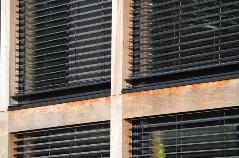 drijvers-oisterwijk-nieuwbouw-exterieur-riet-hout-bakstenen-gevel-grote-pui-ramen-dakkapel-hout-kozijn (9)