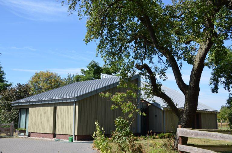 drijvers-oisterwijk-nieuwbouw-exterieur-zink-gevel-dak-strak-modern-bakstenen-deur-raam-pui (2)-min