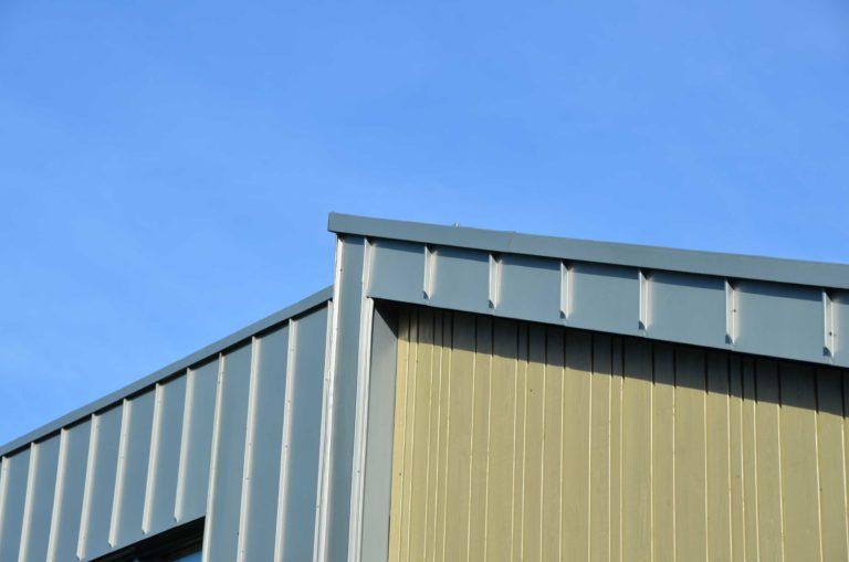 drijvers-oisterwijk-nieuwbouw-exterieur-zink-gevel-dak-strak-modern-bakstenen-deur-raam-pui (9)