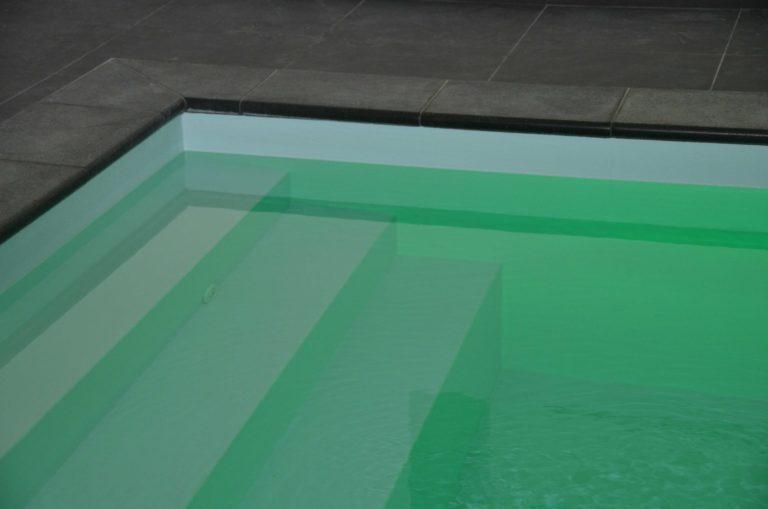 drijvers-oisterwijk-restauratie-interieur-zwembad-landelijk-traditioneel-hout-wit-groen (17)