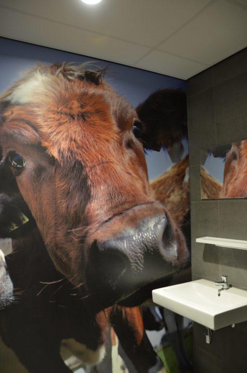 drijvers-oisterwijk-veterinair-centrum-toilet-trespaplaat-koe-modern-interieur-nieuwbouw-natuur-dieren-verlichting-rood-strak (26)-min
