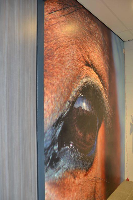 drijvers-oisterwijk-veterinair-trespaplaat-toilet-paard-centrum-modern-interieur-nieuwbouw-natuur-dieren-verlichting-rood-strak (9)