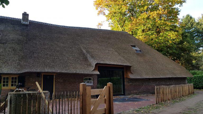 drijvers-oisterwijk-Fellenoord-3