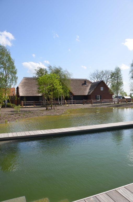 drijvers-oisterwijk-exterieur-nieuwbouw-villa-boerderij-particulier-riet-kap-hout-metselwerk-theehuis-bed-en-breakfast-stal-hout-spant (8)