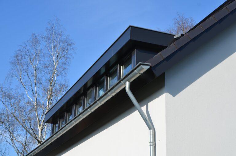 drijvers-oisterwijk-verbouwing-exterieur-interieur-particulier-modern-gemoderniseerd-houten-gevel-spanten-zwembad-wit-stucwerk-pannendak (15)