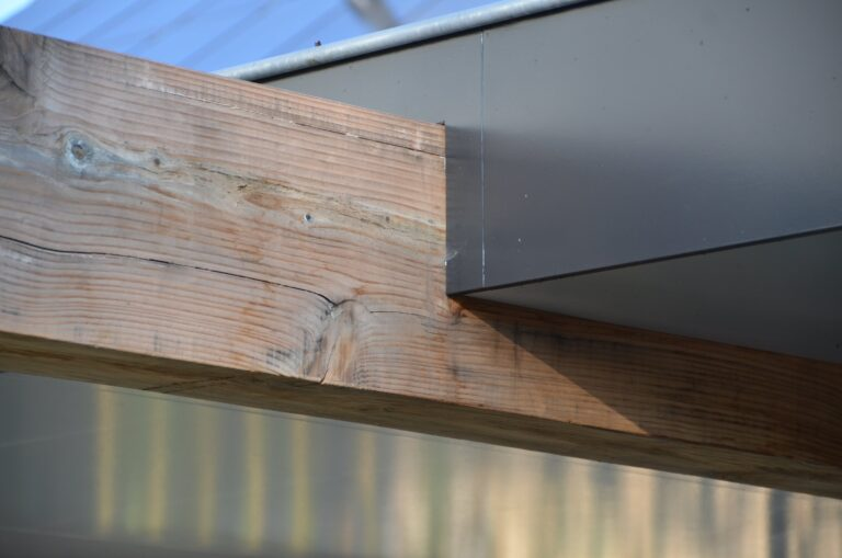 drijvers-oisterwijk-verbouwing-exterieur-interieur-particulier-modern-gemoderniseerd-houten-gevel-spanten-zwembad-wit-stucwerk-pannendak (20)